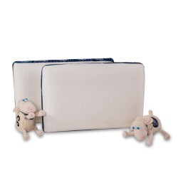 Almohada Guidance Memory Foam 60x40cm